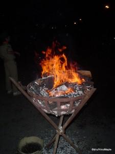 Fire at Meiji Jingu During New Year Festivities