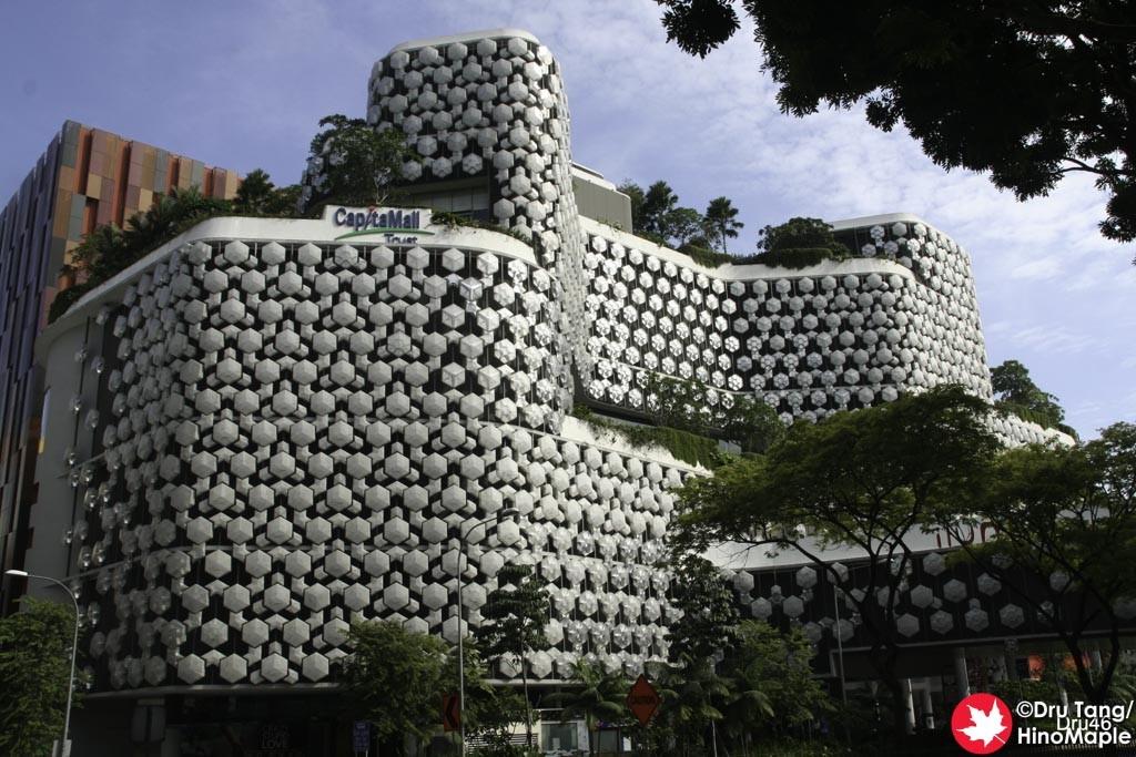 Singapore Bugis City Hall Hinomaple Dru S Misadventures