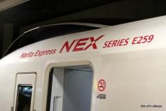 Narita Express (At Tokyo Station)