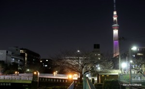 Tokyo Sky Tree (Olympic Colours)