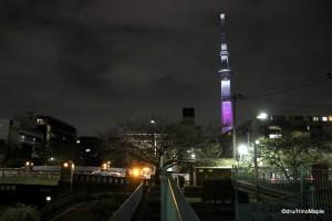 Hanami Tokyo Sky Tree