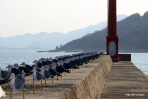 """Seagulls Parking Lot"" by Takahito Kimura"