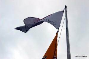ONBA Flag