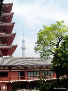 Denboin with Tokyo Sky Tree