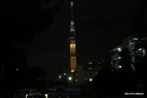 Tokyo Sky Tree (Olympic Bid Colours)