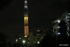 Tokyo Sky Tree (Tokyo Olympic Bid Colours)