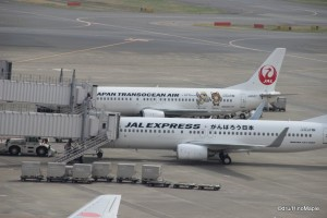 JAL Planes at Haneda Airport