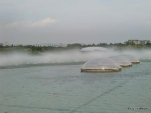 Kasai Rinka Park (At the Tokyo Sea Life Park)