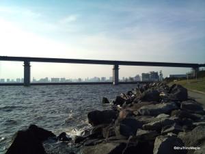 Future Wakasu Olympic Marina