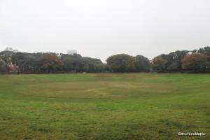 Yumenoshima's Bowl Field