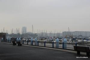 Tokyo Yumenoshima Marina