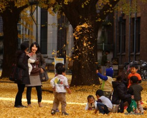 Kids Playing with Ginkgo Leaves at Tokyo University
