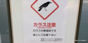 Beware of Crows