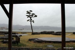Lake Suwa from the Ashiyu
