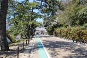 Irohamatsu (47 Pine Tree Street)