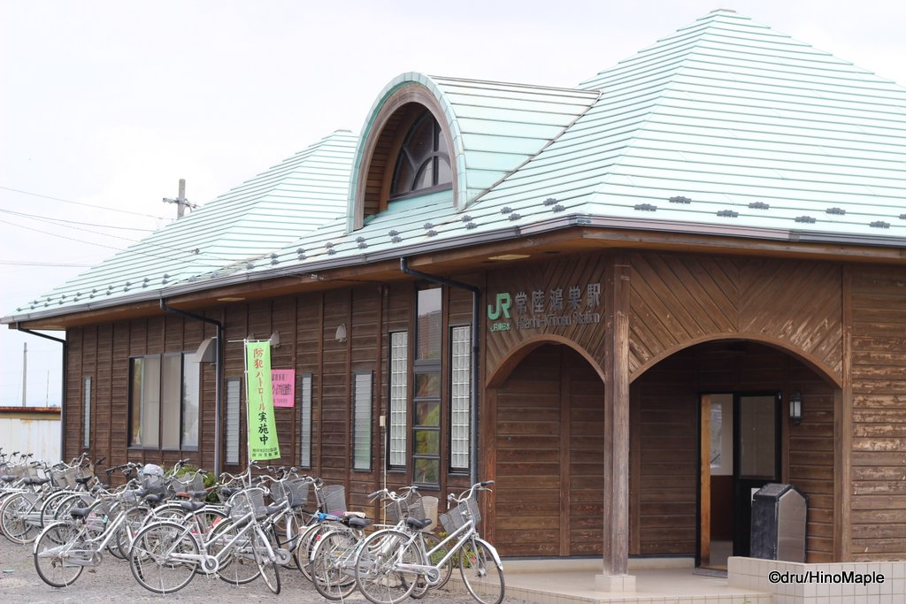 Hitachikonosu Station