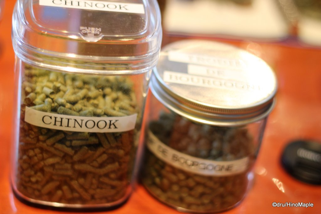 Chinook and Tardif de Bourgogne Hops
