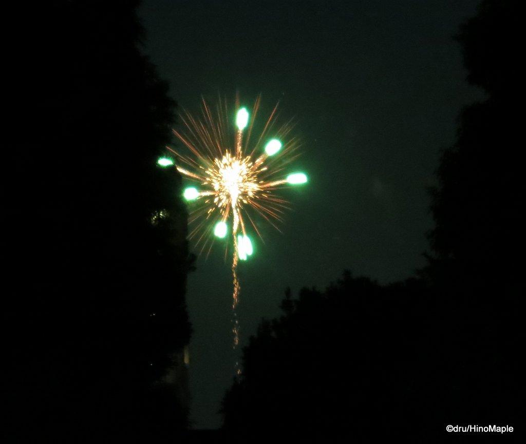 2014 Sumidagawa Fireworks
