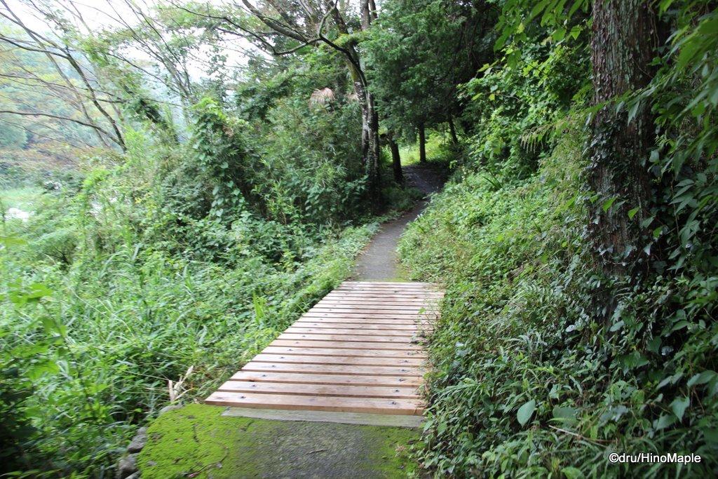 Mitake Valley Walk