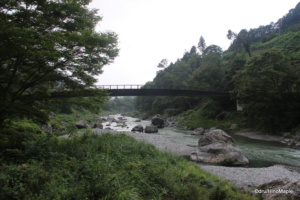 Bridges Crossing the Tama River