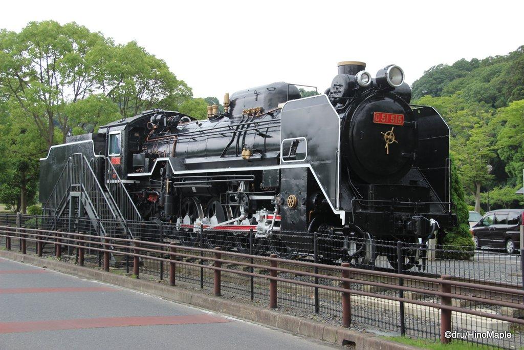 SL D51