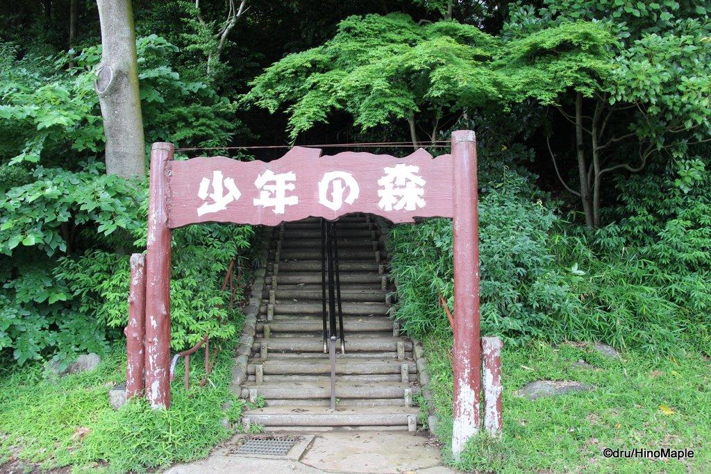 Shonen no Mori