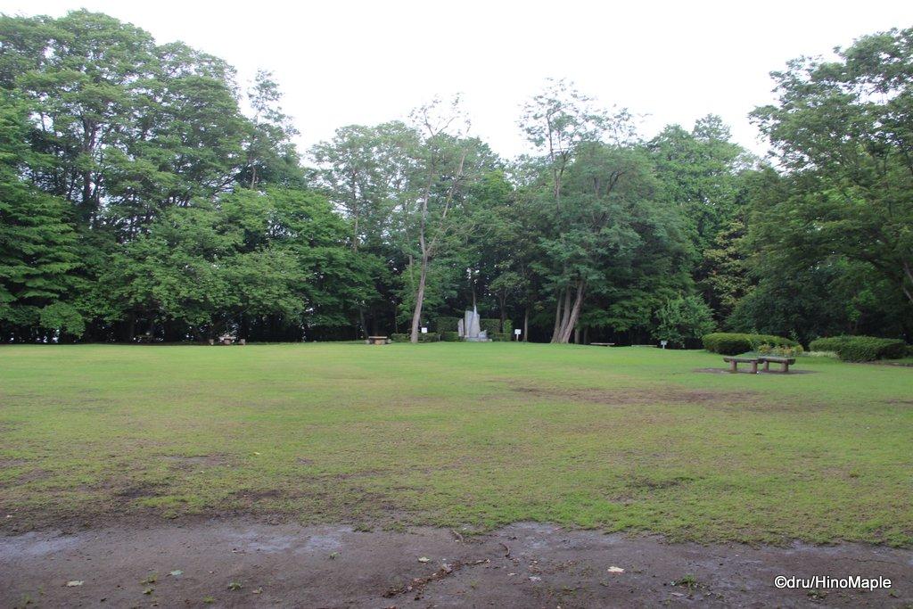 Shonen no Mori (Open Field)