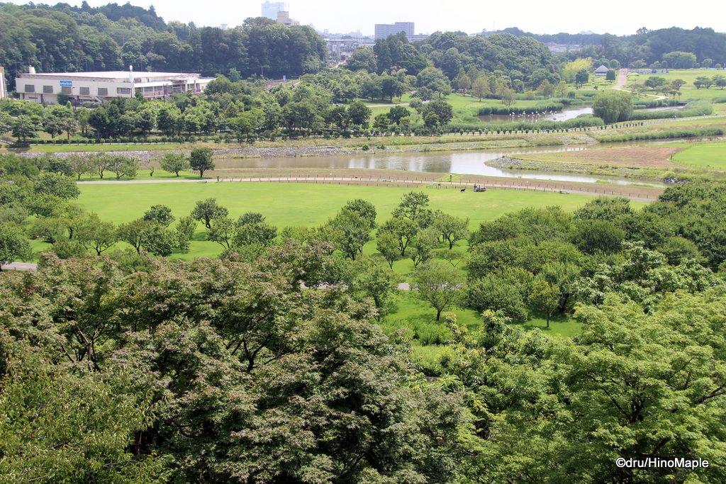 View from Koubuntei