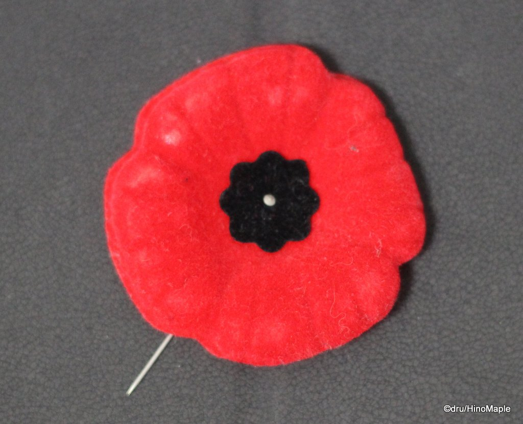 Canadian Poppy