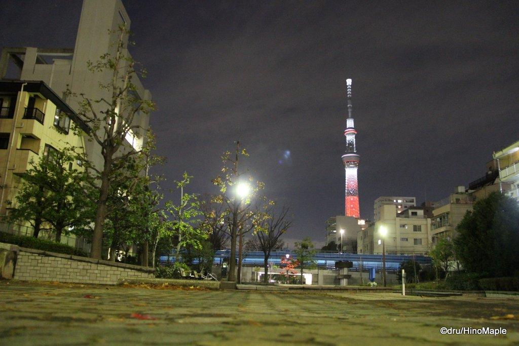 Tokyo Sky Tree (Candle Tree)