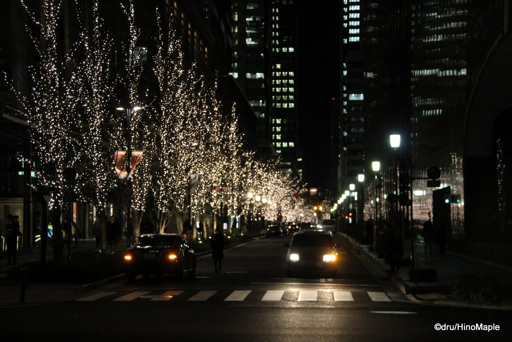 2014 Naka-dori Lights