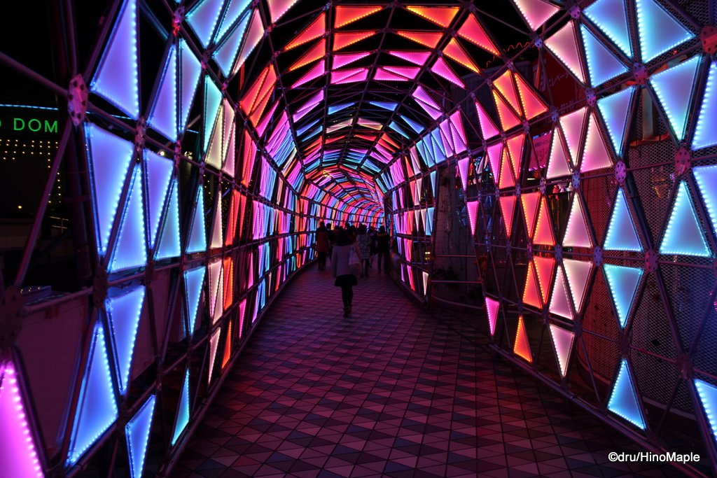 Luminous Tunnel