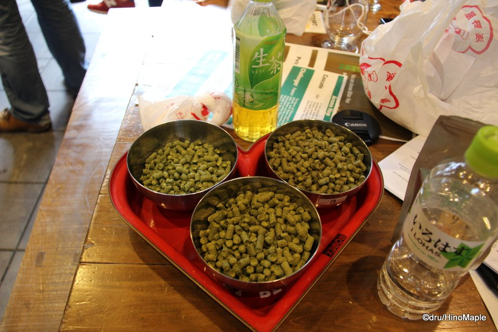 Hops for the Yuzu IPA
