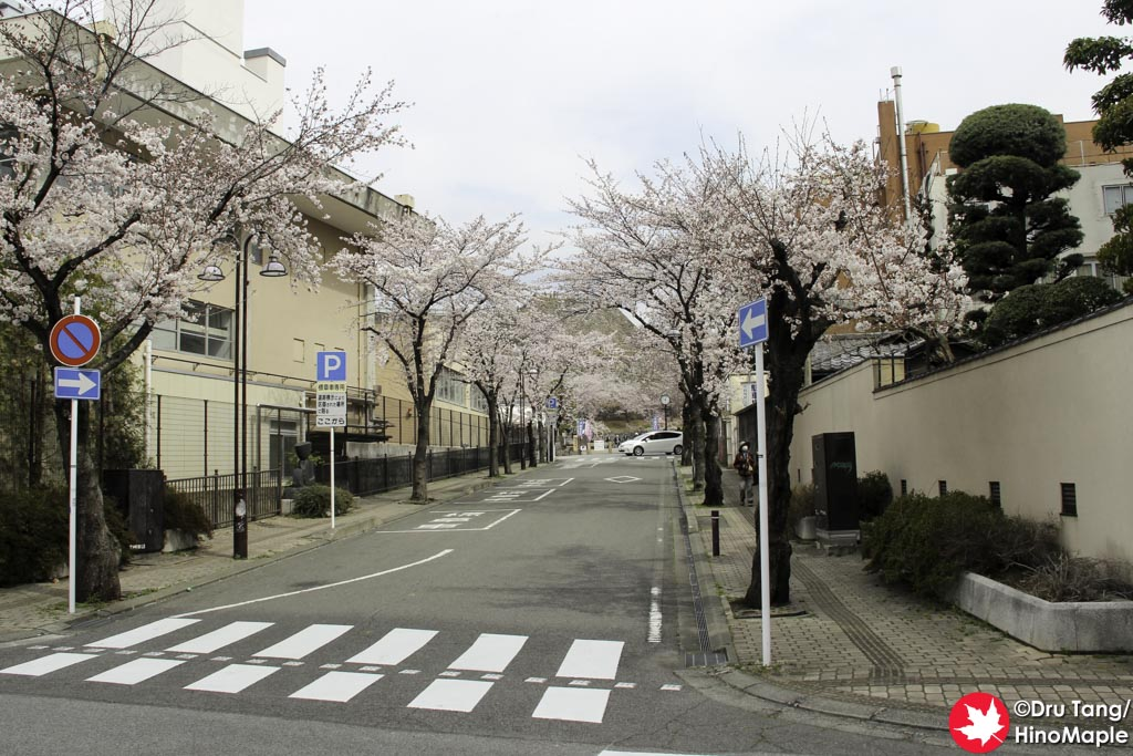 Road Leading to Maizuru Castle Park