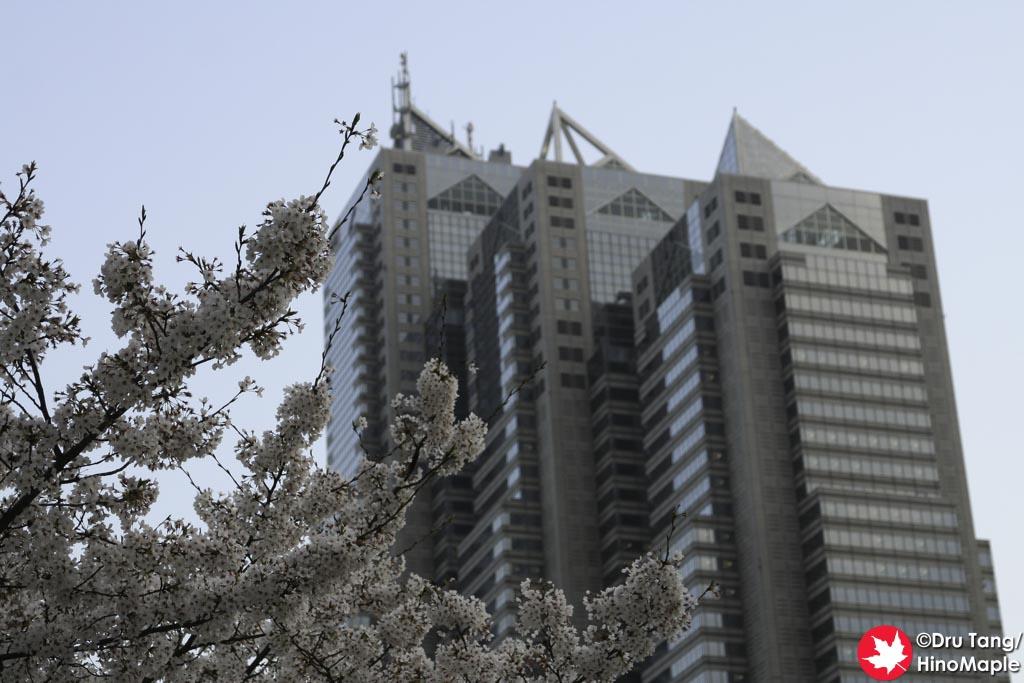Tokyo Metropolitan Buildings