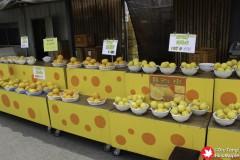Local Fruits at Shimanami 1