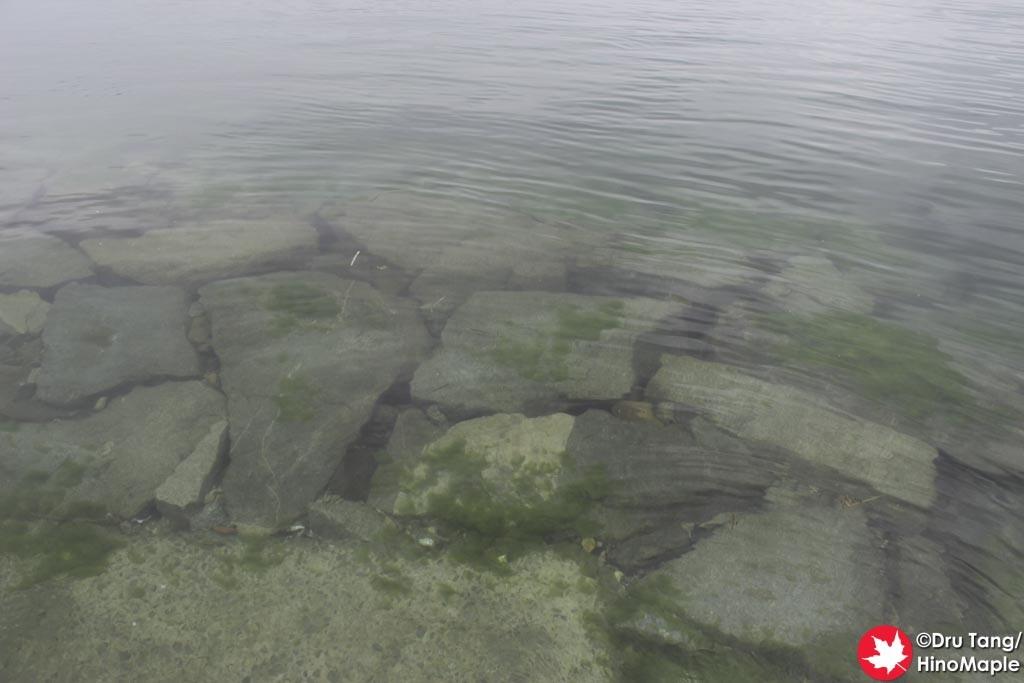 Water at the Amazaki Castle Ruins