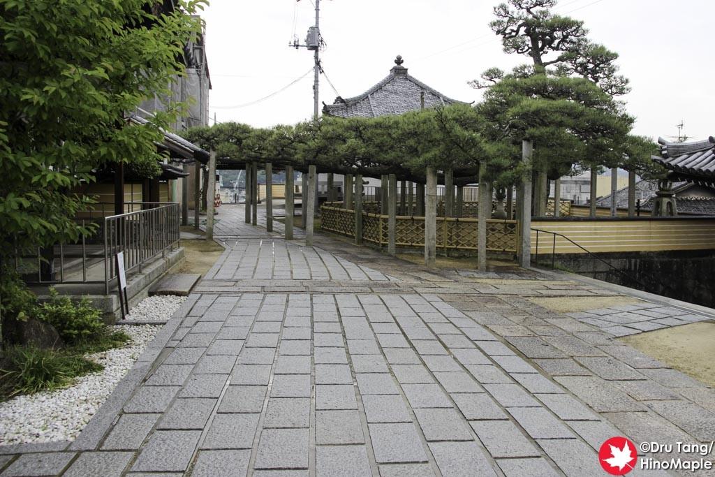 Pine at Fukuzenji