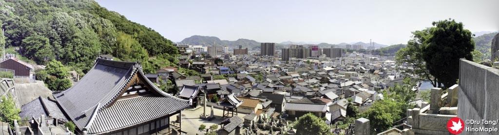 View at Saihoji