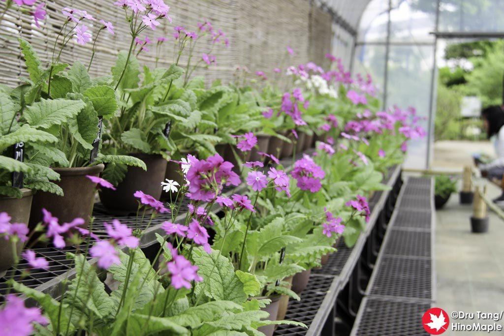 Botanical Garden for Everyday Life