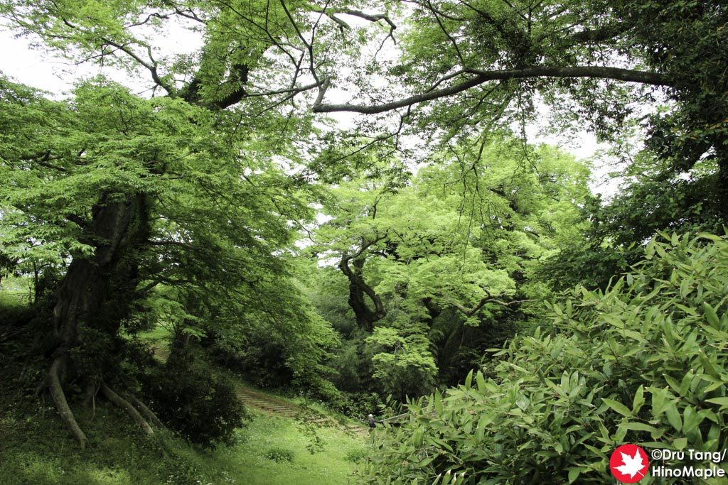 Western Section of Sakura Castle